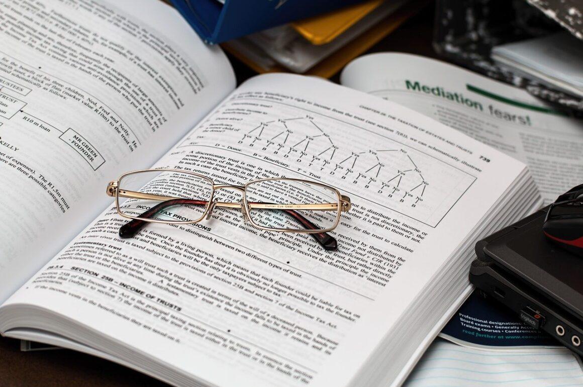 Accounting Grade 11 Essays Topics