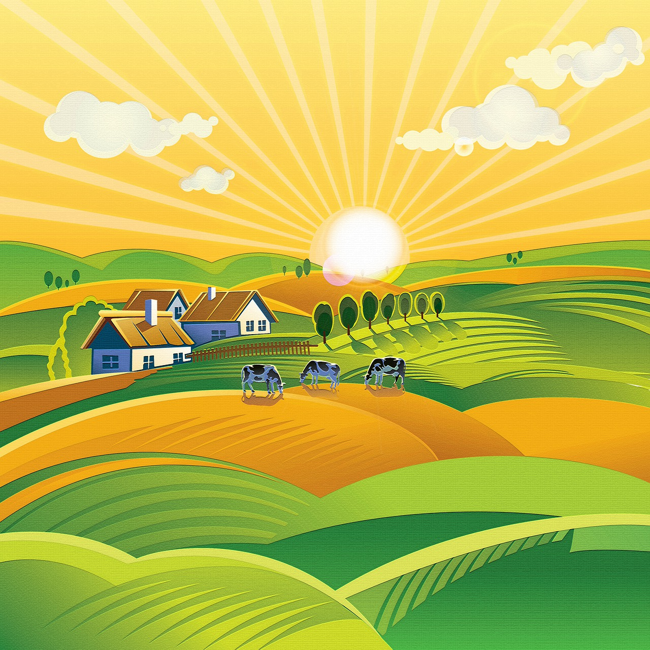 Agricultural Management Practices Grade 12 2020 past exam papers and memos for revision